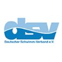 dsv_logo.png